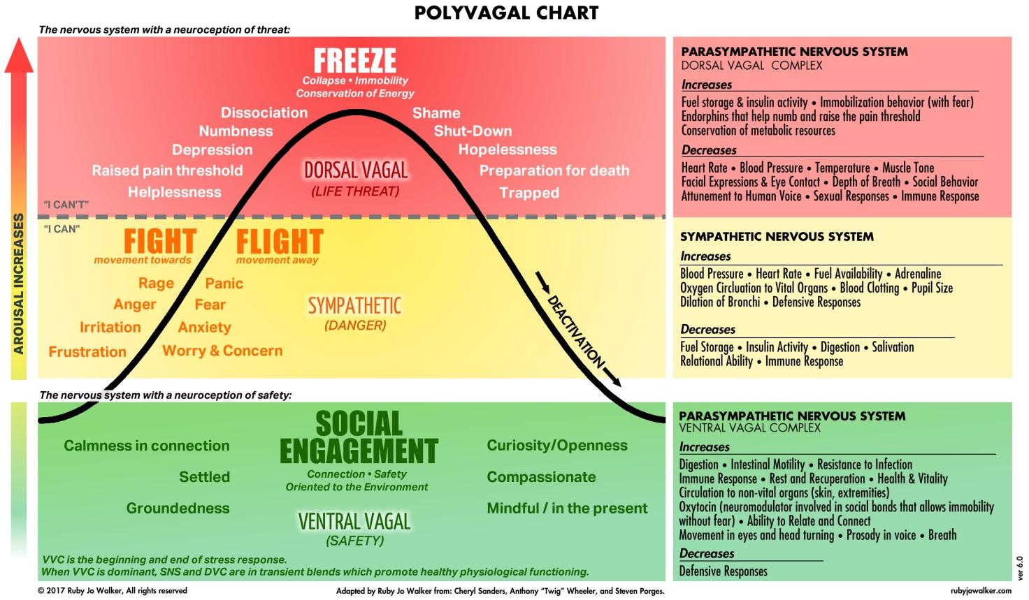 Polyvagal Chart